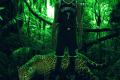 WILD NBA